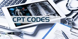 What are the three categories of CPT codes