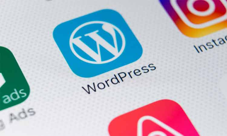 What is the Difference Between cPanel and WordPress