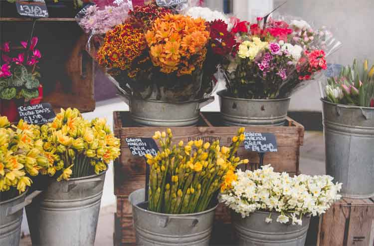 how do you ship fresh flowers
