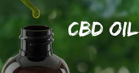 CBD Oil Stay in Your Hair