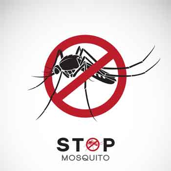 About Mosquitoes