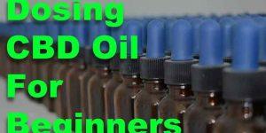 CBD Oil for Beginners